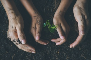 Responsabilité sociale d'entreprise : enseigner aux enfants à se servir de leurs mains