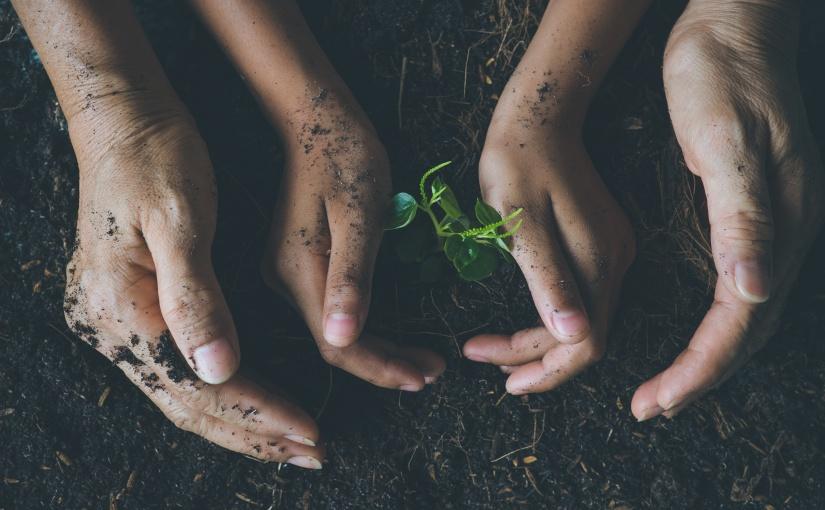 Créer un programme de responsabilité socialed'entreprise